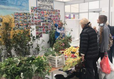 В Красноярске сортоиспытатели представили районированные селекционные достижения